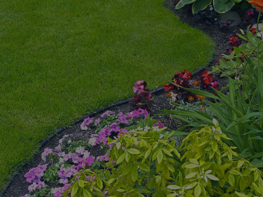 Lansing Garden Design