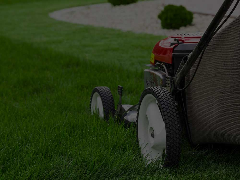 East Lansing Lawn Mowing