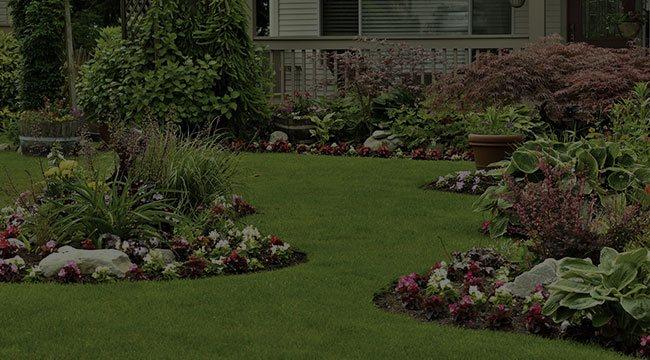 East Lansing Landscape Design